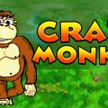 4_play-crazy-monkey