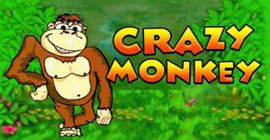 4_play-crazy-monkey